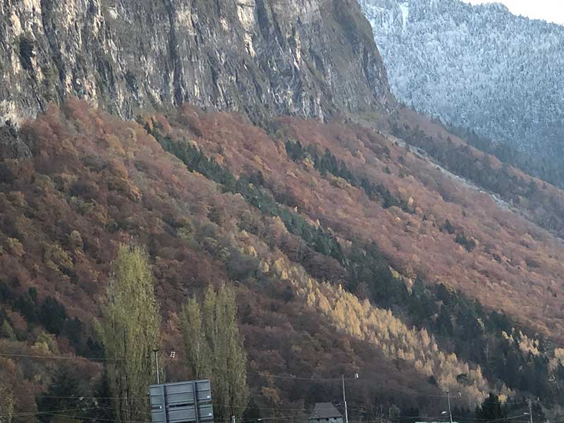 Autumnal colours as we headed up to Mont Blanc