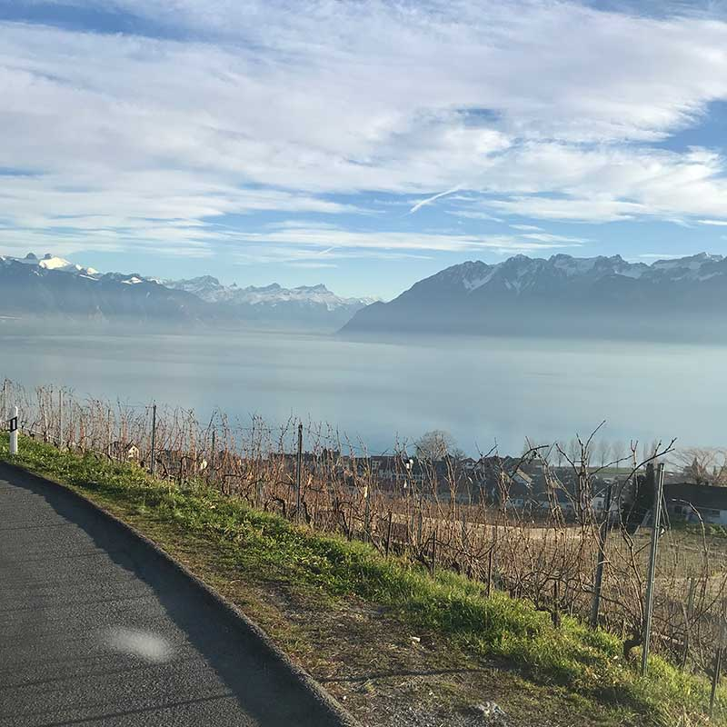 The view across Lake Geneva, where the shores are dotted with vineyards