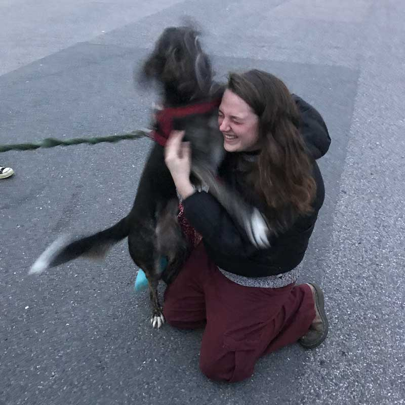 A joyful — and lively — reunion for Annie with owner Rebecca