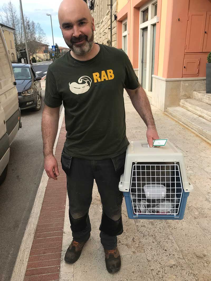 Reunion for Teal in Rapolano Terme in the province of Siena