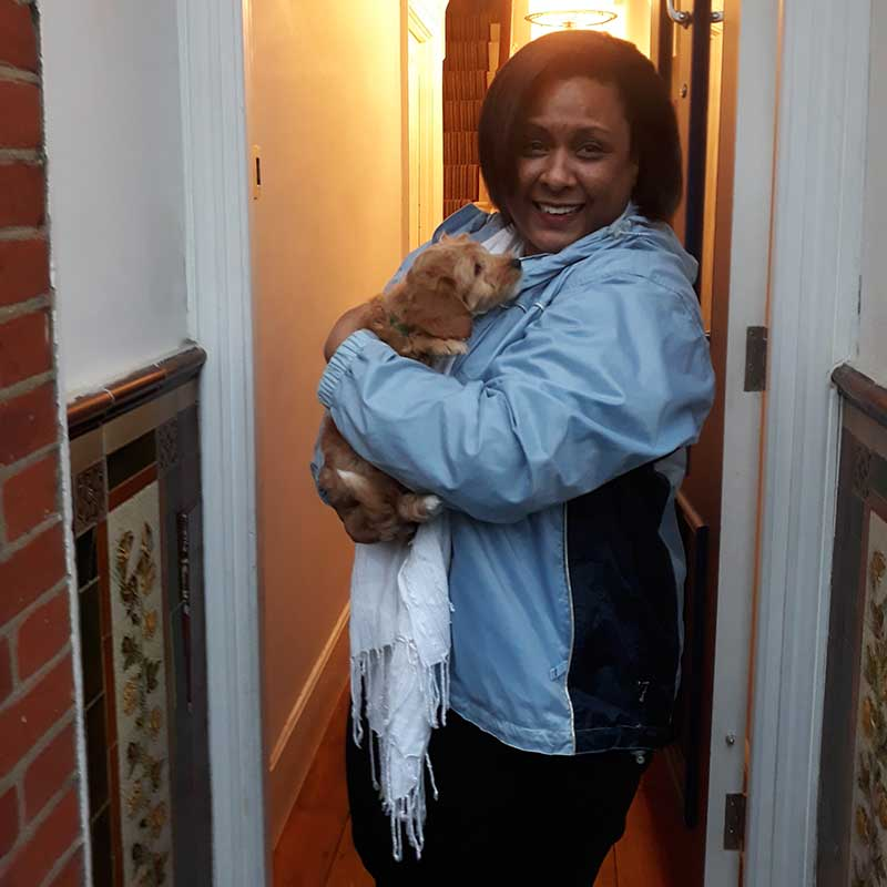 Cuddles for Gilly on reaching his new home in South London