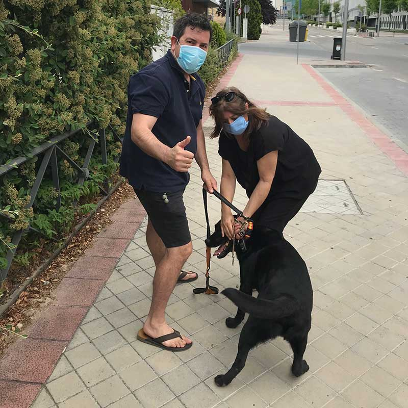 Pet travel trips : Rudolf reunited with a very happy Servio