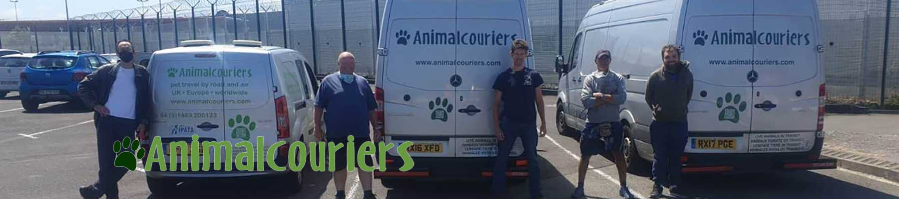 Animalcouriers couriers