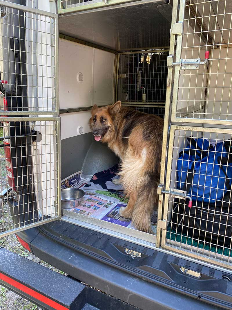 Anna's dog Kaisa checked out Ash's bedroom in our van