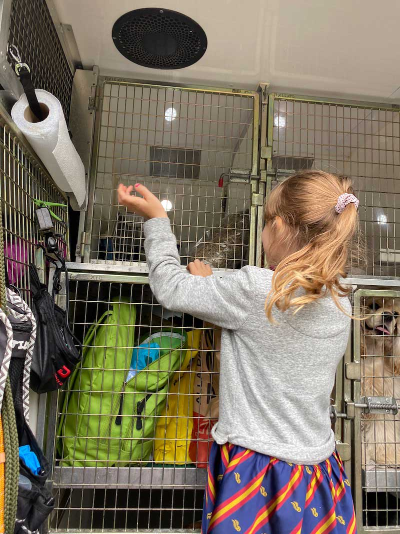 Once Sparkle Heart and Nigel were settled in, Alice came to say goodbye and see you soon