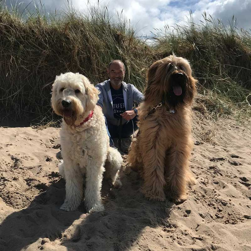 Gorgeous Labradoodle Skyler and Briard Hank travelled from Ayrshire...