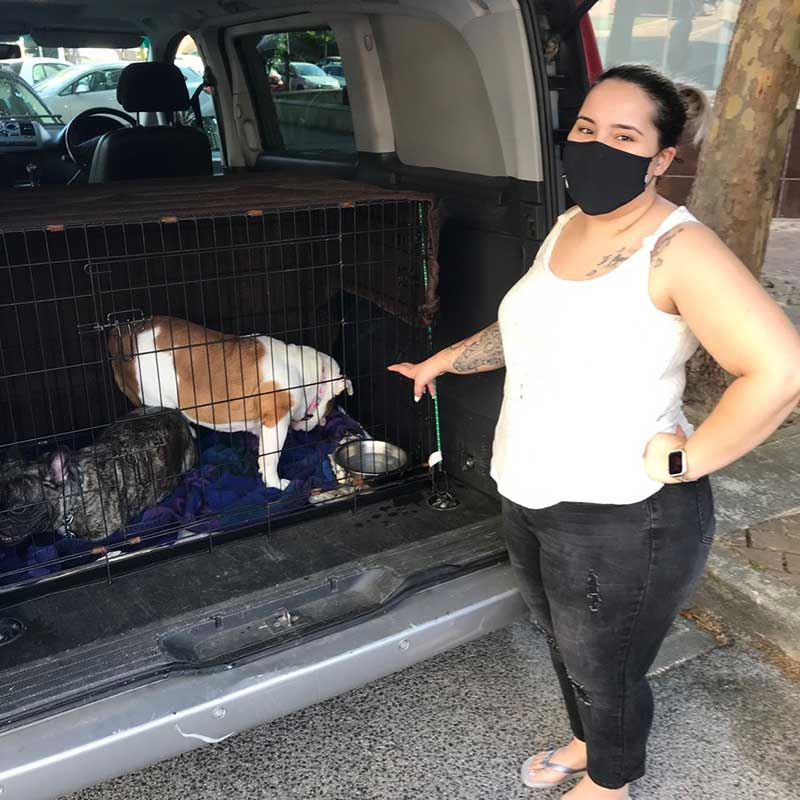 pets who travelled with us : Ana seeing her beloved hounds away