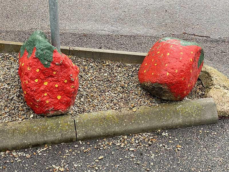 Germany and the Nordics : A pair of very large strawberries!