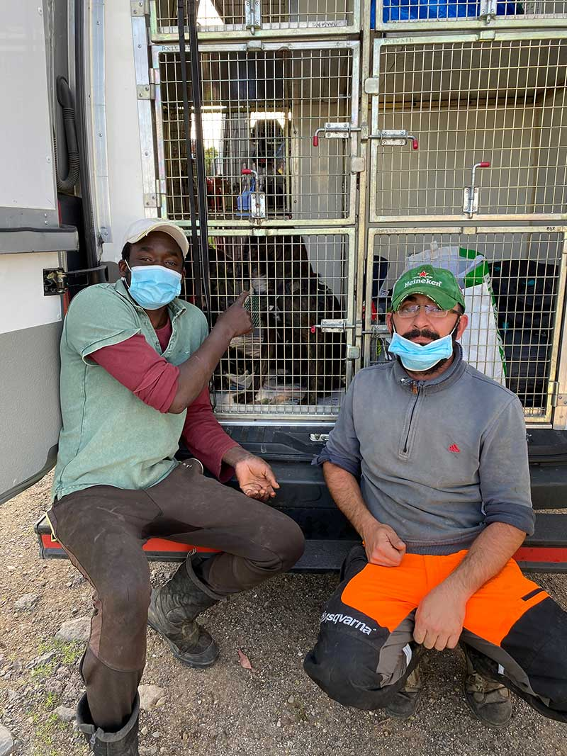 Paulo (R) who works at the shelter, with one of the shelter volunteers, seeing the dogs away