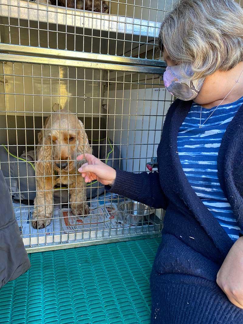 Maxine saying goodbye to Harvey