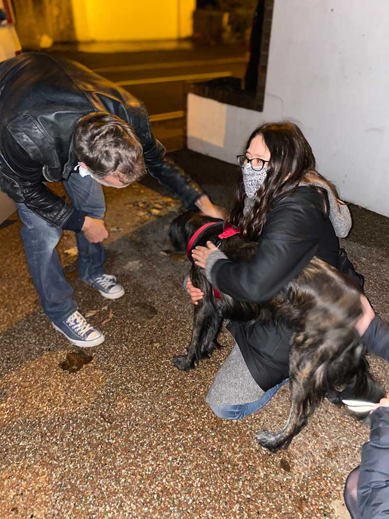 reuniting dogs : Hard to say who was more excited — Lucy or her humans!