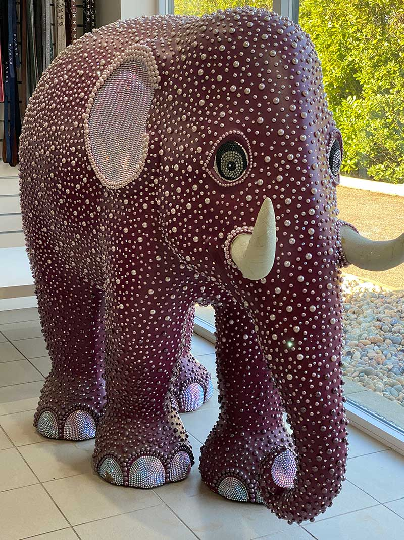 We encountered this eye-catching elephant at the Elmtree Pet Hotel, where Lulu was waiting for us. The elephant, one of a number designed to raise awareness, originally lived at Coutts bank until it was bought at auction by the pet hotel's owners.