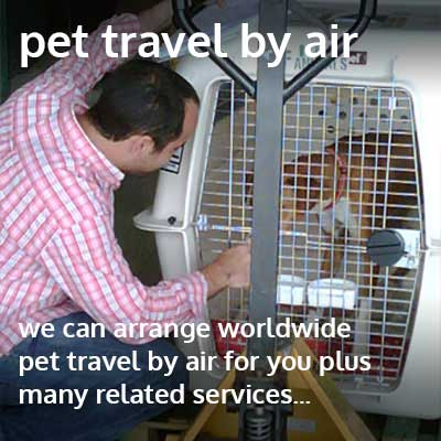 pet travel by air