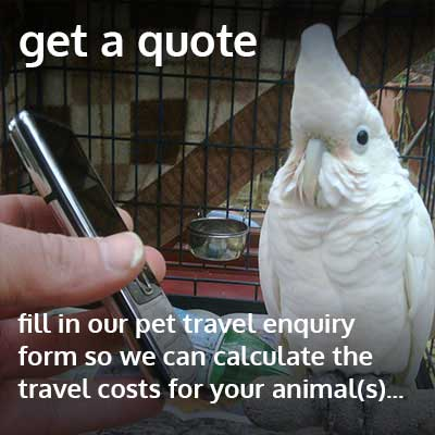 get a quote for your pet travel needs
