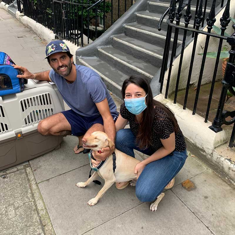 On our way back to the UK, we picked up friendly dog Duna and cat Suquía in Madrid for their journey to London and a happy reunion. Duna can't stop smiling!